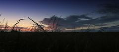 Sunset (Crisp-13) Tags: sunset sky cloud sun green field grass set angle wide