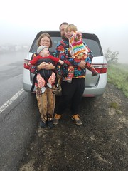 Up at Mt Rainier (quinn.anya) Tags: quinn paul sam andy toddler baby sasquatch van pointing