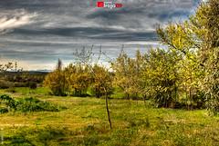 Naturaleza   Cazalegas   Toledo   HDR (alrojo09) Tags: naturaleza paisaje toledo hdr cazalegas alrojo09