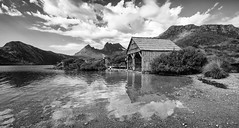 all of this is true (keith midson) Tags: wild cloud mountain playing water children exploring shed tasmania wilderness boatshed dovelake cradlemountain