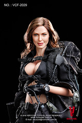 VERYCOOL TOYS VCF-2029 Black Female Shooter - 13 (Lord Dragon ) Tags: hot female toys actionfigure doll angelinajolie verycool onesixthscale 16scale 12inscale
