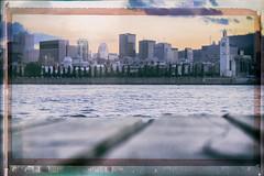 Montreal Skyline (A Great Capture) Tags: trees urban canada building tower clock water skyline buildings river island dock view mtl quebec montreal stlawrence oldport saintlaurent qc vieuxport fleuve agc ald ash2276 ashleylduffus agreatcapture