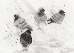 2016 05 21 pigeons (lilya_de) Tags: birds watercolor painting mixedmedia aquarelle pigeons watercolour gouache fabriano hotpress colourpencils