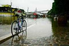 (emiliefolleville) Tags: paris france seine bnf iledefrance quai innondation crue quaideseine lesberges petitbain crue2016