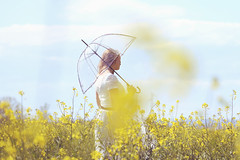 After rain comes sunshine (stefaniebst) Tags: portrait woman sunlight nature girl field spring poetry outdoor femme fineart dream poetic illusion portraiture mirage dreamer extrieur dreamland printemps champ dreamscape fineartphotography softy naturelover colza