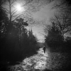 A Way Out (LowerDarnley) Tags: winter snow ma holga woods walker gloucester figure dogtown moraine glacial capeann