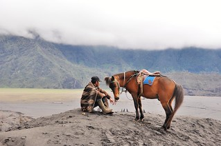 mont bromo - java - indonesie 31