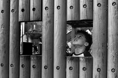Window seat (EyeOfTheLika) Tags: street wood family boy urban blackandwhite bw white black london window lines children square real model candid lika boxes 500px ifttt