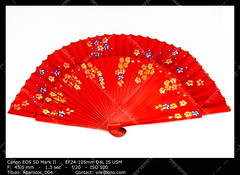 Spanish fan (__Viledevil__) Tags: wood color art beauty fashion design fan wooden spain colorful open wind vibrant object traditional decoration culture craft andalucia souvenir spanish andalusia flamenco cultural elegance accessory spanishculture lacquered