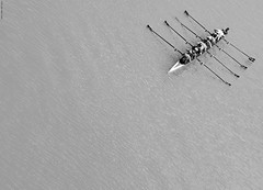 Diagonal. (Carlos Arriero) Tags: blackandwhite espaa blancoynegro water sport ro composition river sevilla spain guadalquivir agua nikon diagonal deporte tamron canoa canoeists remo rowers composicin 2470mm remeros remando piragistas rowed d800e carlosarriero
