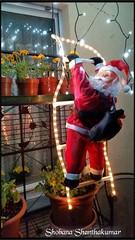 Christmas Decorations 2015 (Tamilpoems (Tamil kavithaigal)) Tags: christmas christmasdecorations christmastree christmaslights christmaspapa google europe switzerland schweiz suisse zurichfest zurich zurichcity zrichfest zrich mnnedorf geneva glarus weihnachten weihnachtendekoration