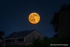 Full Moon Summer Solstice (Thomas DeHoff) Tags: summer moon sony iowa full solstice a580