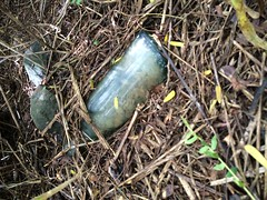 Aiea Soda Works , Oahu Hike Finds , 2016 (Hizmiester2) Tags: history hawaii bottle oahu digging hunting historic works soda relic aiea seltzer leeward hawaiiana aieatown aieasodaworks