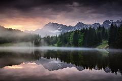 foggy lakeside (Dennis_F) Tags: morning mist misty fog sunrise bavaria geroldsee