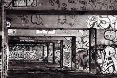 Urban paradise (B&W edit) (Sean Hartwell Photography) Tags: bridge urban blackandwhite london art monochrome grit concrete graffiti motorway decay flyover westlondon a40 uxbridge hillingdon canon400d sigma18250mm