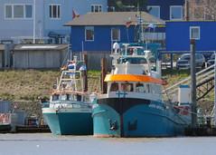 Sara Maatje VII (IMO 7811422) (Parchimer) Tags: cuxhaven amerikahafen versorger offshorevessel crewvessel