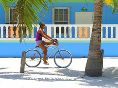 Anyday (AlfredoZablah) Tags: travel traveling photography light live vacation yellow beach tour landscape art bird birds fashion family fun garden macro old classic sea trip surf surfers waves sunday sunny miami florida bahamas norwegian crucero cruise sky babes brazileñas brazilians belize belizean roatan honduras ambegris ambergis cailker caye cayo key bikinis natura delfines dolphins nadando olympus reflex uro e510 zuiko digital 70300mmed modelos playas sol arena flickr flickrs kids smile paparazzi
