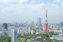 TOKYO TOWER (Trini Teng) Tags: life travel vacation tower love japan japanese tokyo asia cityscape fuji tokyotower fujifilm xt1 xf35mm