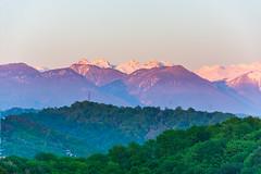 DSC_9988 (sergeysemendyaev) Tags: pink sunset white mountains green beautiful spring scenery view dusk adler sochi  greenandwhite greentrees 2016 snowpeaks             pravoslavnayastreet