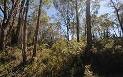 325 Chifley Road, Dargan NSW