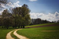 IMG_8928a (figoosia) Tags: landscape poland natura krzy chmury niebo podlasie podlachia