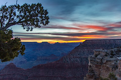 One Fine Day (Jill Clardy) Tags: park arizona tree silhouette sunrise point grand canyon explore national mather explored 20160303mg9618