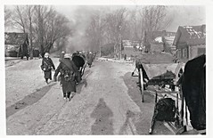 Nazis Germany, WWII, Winter, Cart, Sled, Soldiers (photolibrarian) Tags: winter wwii soldiers cart sled nazisgermany
