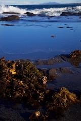 Rock shelf pools (Geoff Main) Tags: sea seascape coast australia nsw nswsouthcoast broulee canonef24105mmf4lisusm mtdromedary rockshelf brouleeisland canon6d
