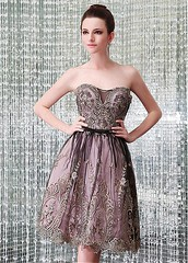Exquisite Tulle Strapless Neckline A-Line Homecoming Dress With Lace Appliques & Bowknot (miyadresses2016) Tags: homecomingdrsss elegantdress floraldress stunningdress lacedress occasiondress formaldress