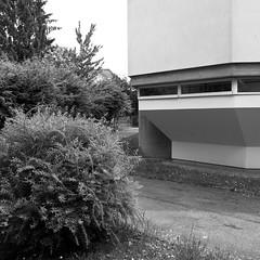 Feste Burg / Mighty Fortress (bartholmy) Tags: church window architecture austria sterreich bush fenster architektur shrub graz steiermark busch greenspace styria jakomini grnanlage kirch katholischekirche catholiccurch christusderauferstandene