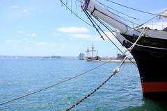 California - San Diego (oriana.italy) Tags: california usa harbor sandiego img0043 paificocean shipsails