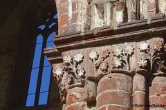 Rankenkapitell, ehemalige Zisterzienserabtei Kloster Chorin, Brandenburg (Sekitar) Tags: abbey germany deutschland europe gothic ruine monastery brandenburg kloster gotik middleage abbaye moyenage eberswalde barnim mittelalter chorin cistercians cistercienne zisterzienserabtei