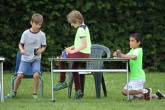 IMG_3248 (Thimp1) Tags: school bird animal sam fete sammy scholl cawston