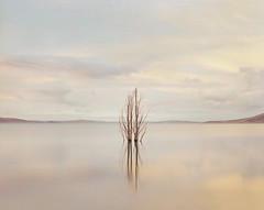 (roundtheplace) Tags: lake reflection water mediumformat landscape australia nsw australianlandscape portra analogphotography landscapephotography pentax67 portra160 oldadaminaby snowhydroscheme