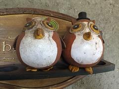 Decoraes mineiras. (Elias Rovielo) Tags: minasgerais mg wise quintal decorao owls corujas farofas sabedoria sojoaquimdebicas farafos
