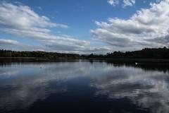 Zellsee (Bernfried) Tags: bayern bavaria see upperbavaria ufer spiegelung weiher gewässer fischweiher zellsee paterzell 20150508eibenwald weileim