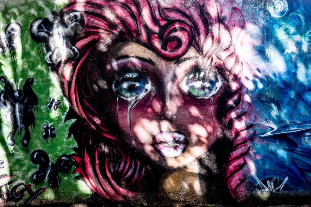 STREET ART IN DUBLIN - CABRA PARK URBAN GALLERY [A REALLY UGLY LANE]-104073