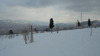 Monte Arraiz