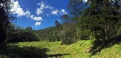 En La Sal, Cordillera Central (Dax M. Roman E.) Tags: lavega republicadominicana pasobajito cordilleracentral laespañola reservacientificaebanoverde rcev daxroman