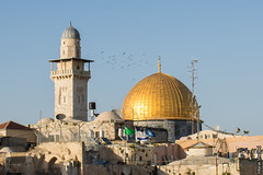 birds above the golden dome (barak.shacked) Tags: religious israel islam jerusalem domeoftherock holly jewish  islamic westernwall hollyland hollycity  thewesternwall qubbatassakhrah oldcityofjerusalem thegoldendome  domeofthegold