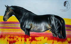 In an Ocean of Color - Color pencil portrait ( S. D. 2010 Photography) Tags: ocean flowers horse art standing pencil painting bay colorful tulips drawing fields prismacolor stud stallion equine vast richcolor