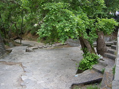 (Psinthos.Net) Tags: morning trees nature leaves stairs waterfall spring pavement path steps may valley greens groove stonewall mayday planetrees treebranches fallenleaves paved planetree     vrisi   psinthos                    psinthosvalley    vrisiarea     vrisipsinthos