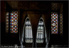 Cortines de marbre. (Palau Gell - Barcelona - Catalunya). (Antoni Gallart i Vilarrasa) Tags: barcelona windows beautiful contraluz interior palace catalonia ventanas curtains inside catalunya cortinas vidrieras palau catalua palacio gell d800 contrallum stainedglasswindows 2016 antonigaud finestres blacklighting vidrieres curtines