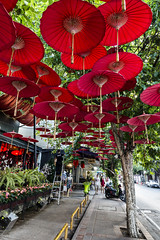 99 Luft Umbrellas (Anoop Negi) Tags: 99 red balloons luft ballons thapae gate wawee cafe chiangmai thailand old city umbrellas frontage restaurant photo photography anoop negi ezee123 anti war anthem lyrics song pop music