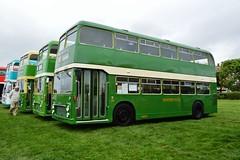 628 SDL638J (PD3.) Tags: uk blue england bus buses museum vintage bristol spectacular brighton 628 vrt hove hampshire southern vectis portsmouth preserved dennis common dart vr southsea ecw hants sdl plaxton sdl638j 638j