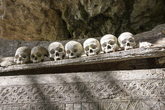 Heres looking at you. (Hank888) Tags: toraja indonesia skull coffin grave hank888 5d canon5d