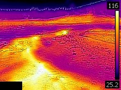 Thermal image of unnamed perpetual spouter north of Anemone Geyser (morning, 11 June 2016) (James St. John) Tags: big anemone geyser hill group upper basin yellowstone hotspot volcano wyoming hot springs thermal image temperature unnamed feature perpetual spouter