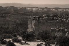 endless possibilities... (Alvin Harp) Tags: canyons utah natureswonder nature blackandwhite bw monochrome sepia sonynex5n august 2012 alvinharp plateaus