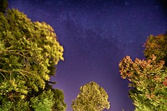 Fall Colors & Milky Way (CdnAvSpotter) Tags: astronomy milky way stars night sky long exposure fall colors
