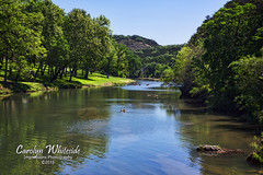 Guadalupe River 4th Crosssing